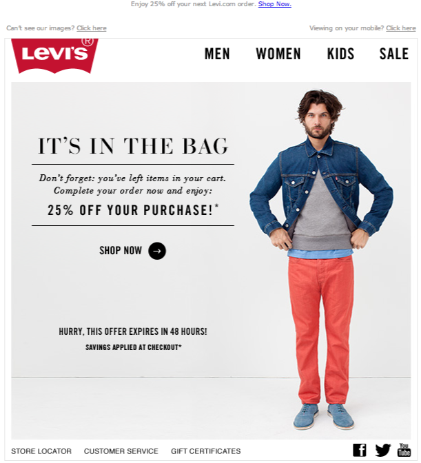 Abandoned cart email levis
