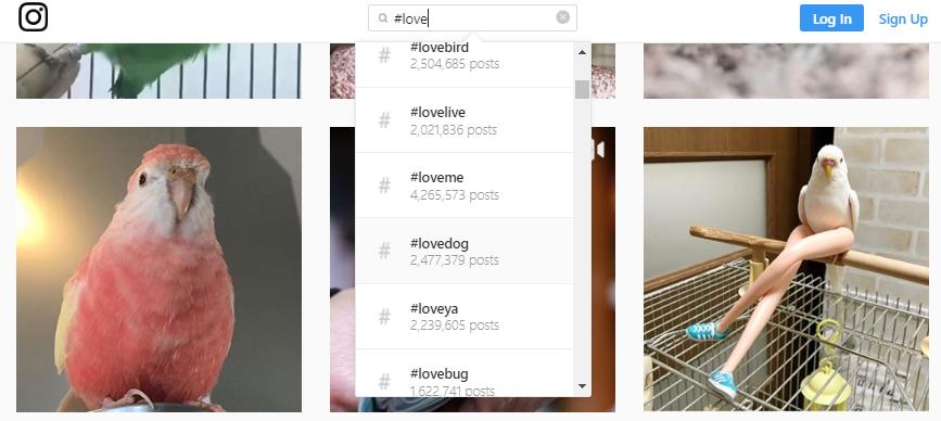 hashtags popolare Instagram