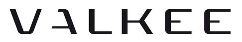 Valkee logo   Поиск в Google
