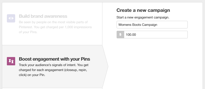 Pinterest Ads: Setting up campaign name and budget