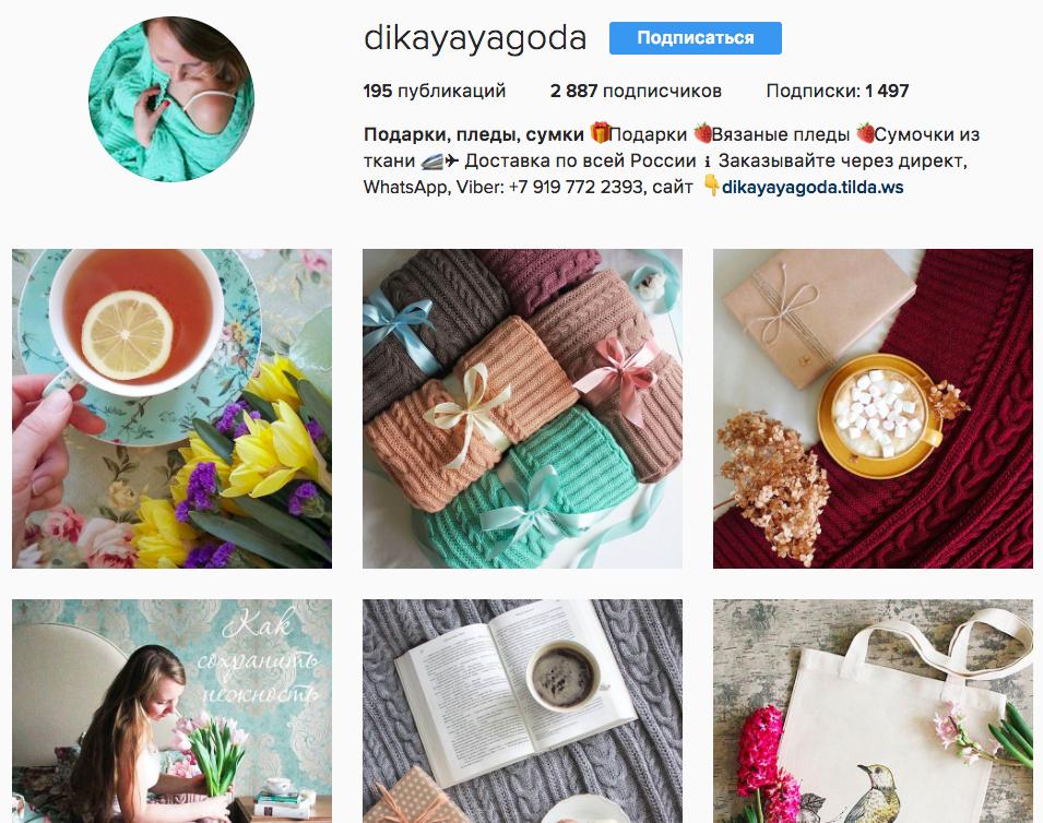 Интернет-магазина DIKAYA YAGODA в Инстаграме